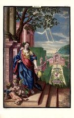 Aegle Volkamer 1708