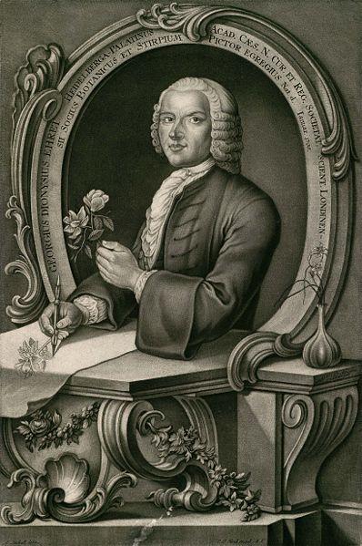 G. D. Ehret
